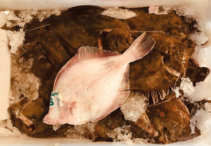 C'mon over to our Plaice….